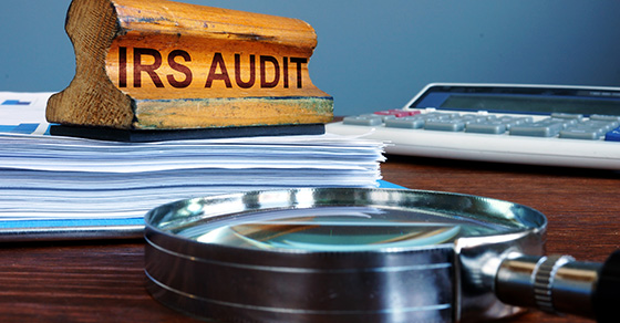 CPA Business and Personal Tax Expert - Business Tax Audits