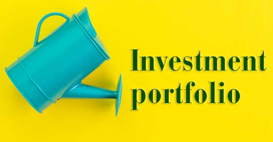 CPA Business and Personal Tax Expert - Investment Portfolio